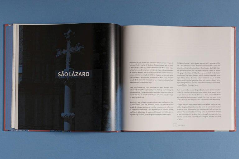 capitulo do livro Historia e Azulejos dos Hospitais Civis de Lisboa