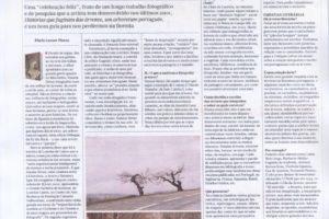 """Artigo completo do JL sobre a nossa estimada autora Susana Neves e o livro """"Hist…"""