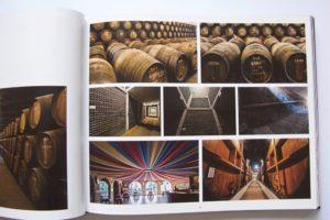 Um livro bilingue onde as fotografias do Mestre Homem Cardoso ilustram o concelh…