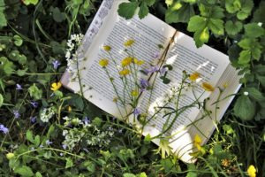 Maria Amélia Martins-Loução sugere cinco livros de natureza para o Verão