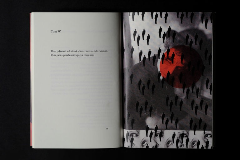 interior do livro venenoso