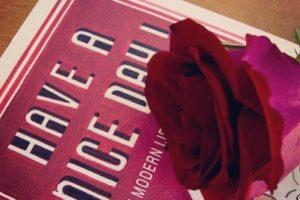 Feliç Sant Jordi! Uma tradição catalã em que os homens oferecem rosas às mulher…